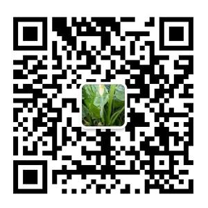 深圳市顺之盈乐虎体育app有限公司